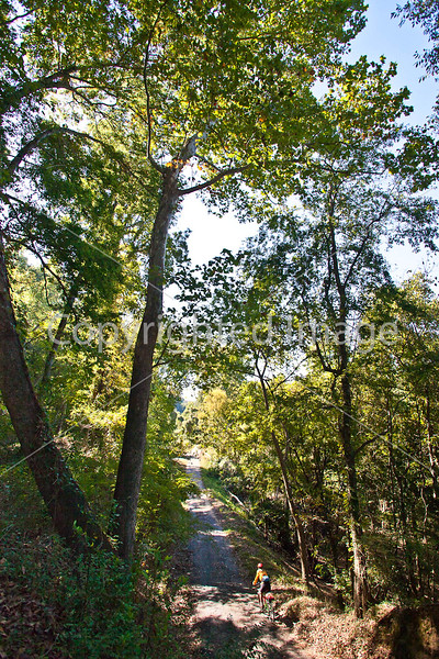 Biker on road to Fort Cobun at Grand Gulf Military Park, Mississippi - D1-C2-0161 - 72 ppi