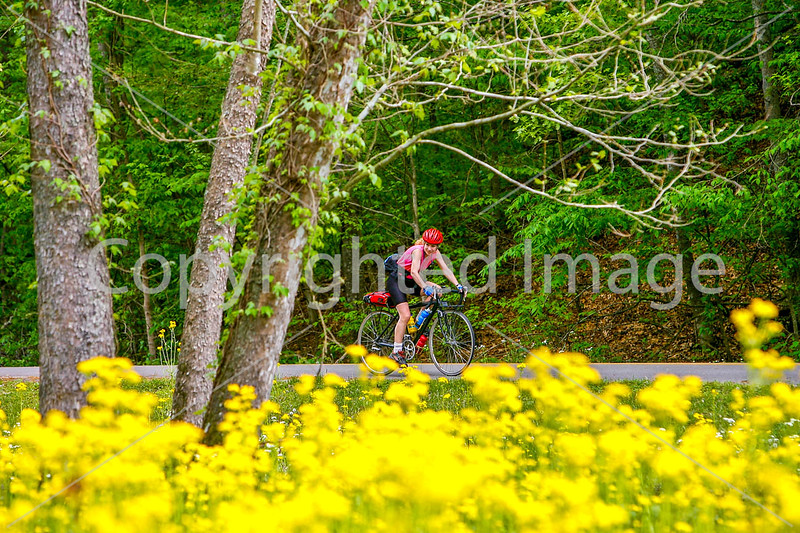 Thin-tire cyclist at Fort Pillow State Historic Area in Tennessee-0136 - 72 ppi