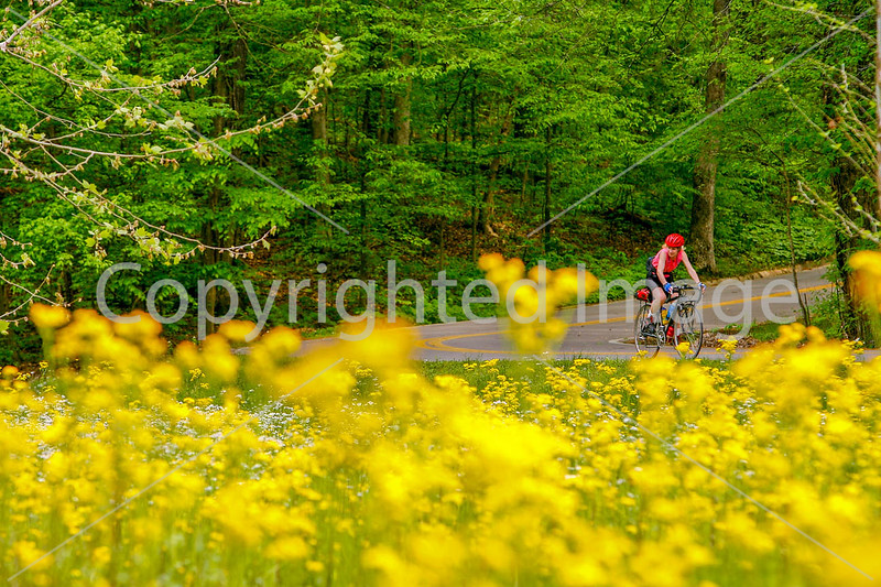 Thin-tire cyclist at Fort Pillow State Historic Area in Tennessee-0167 - 72 ppi