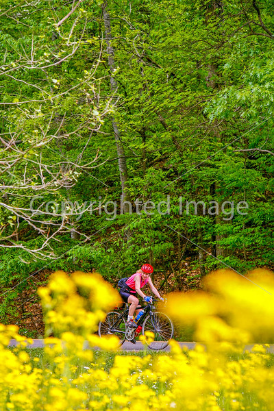 Thin-tire cyclist at Fort Pillow State Historic Area in Tennessee-0176 - 72 ppi