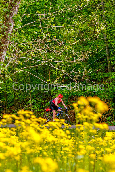 Thin-tire cyclist at Fort Pillow State Historic Area in Tennessee-0174 - 72 ppi