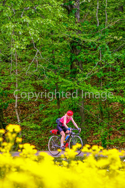 Thin-tire cyclist at Fort Pillow State Historic Area in Tennessee-0182 - 72 ppi