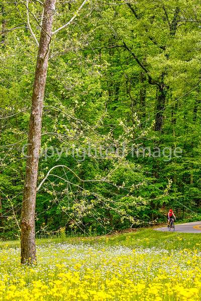 Thin-tire cyclist at Fort Pillow State Historic Area in Tennessee-0207 - 72 ppi