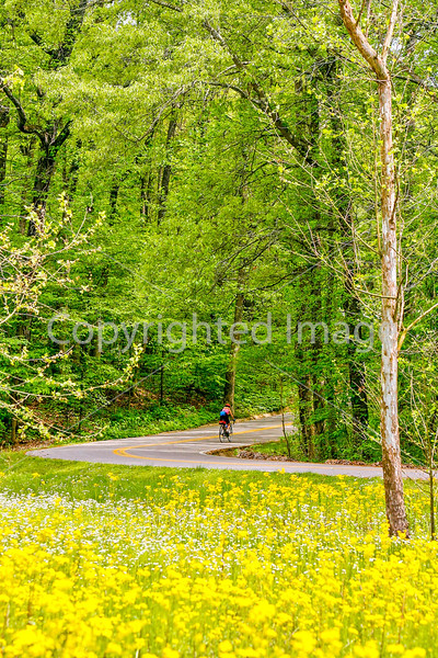 Thin-tire cyclist at Fort Pillow State Historic Area in Tennessee-0201 - 72 ppi