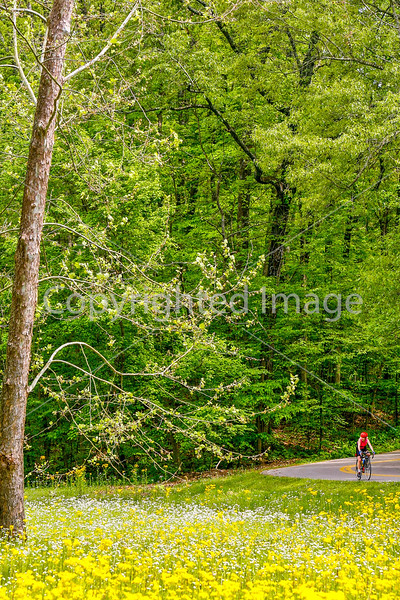 Thin-tire cyclist at Fort Pillow State Historic Area in Tennessee-0211 - 72 ppi