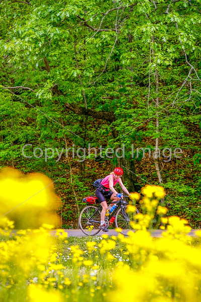 Thin-tire cyclist at Fort Pillow State Historic Area in Tennessee-0180 - 72 ppi