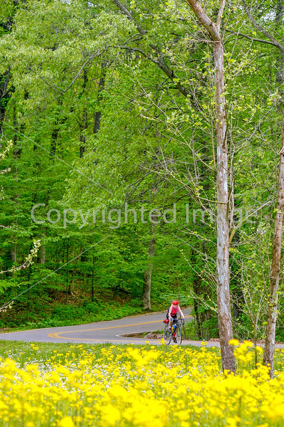 Thin-tire cyclist at Fort Pillow State Historic Area in Tennessee-0135 - 72 ppi