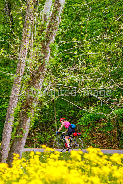 Thin-tire cyclist at Fort Pillow State Historic Area in Tennessee-0148 - 72 ppi