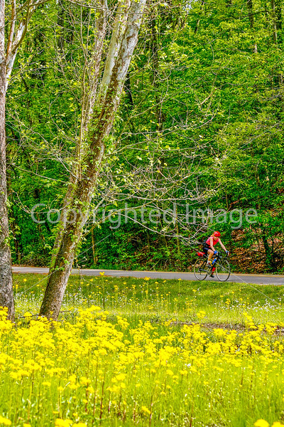 Thin-tire cyclist at Fort Pillow State Historic Area in Tennessee-0240 - 72 ppi