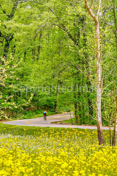 Thin-tire cyclist at Fort Pillow State Historic Area in Tennessee-0199 - 72 ppi