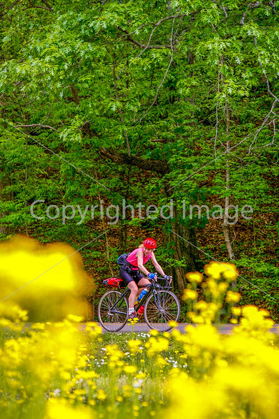 Thin-tire cyclist at Fort Pillow State Historic Area in Tennessee-0179 - 72 ppi
