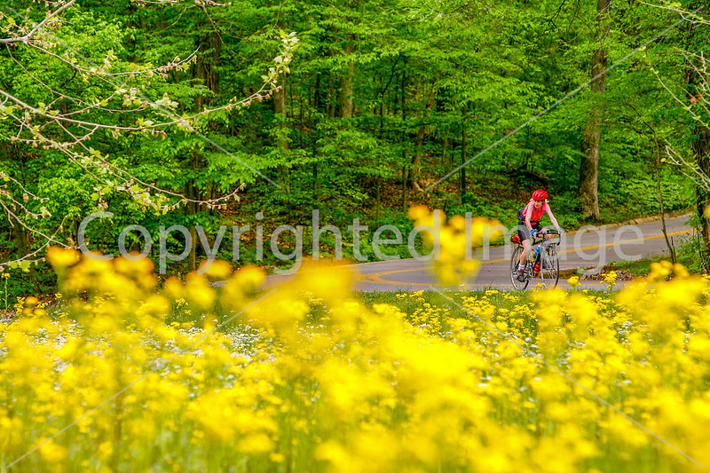 Thin-tire cyclist at Fort Pillow State Historic Area in Tennessee-0166 - 72 ppi
