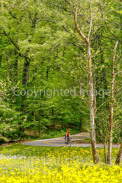 Thin-tire cyclist at Fort Pillow State Historic Area in Tennessee-0233 - 72 ppi