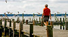Pier on Potomac River - nearest one can get to where Booth & Herold hid out - Charles County, Maryland____0023 - 72 dpi