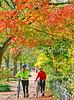 Cyclists in Washington, DC, near the Capitol - 72 dpi -1330-2