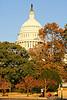 Cyclists near Capitol Hill in Washington, DC - 72 dpi -1556