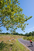 Cyclist at Gettysburg National Military Park, Pennsylvania-M3-0729 - 72 ppi