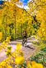 Mountain biker on Colorado's Alpine Loop - Lake City to Engineer Pass in San Juan Mts  - 9  - 72 ppi
