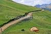 Tourer near Red Mt  Pass between Silverton & Ouray, Colorado - 11 - 72 ppi