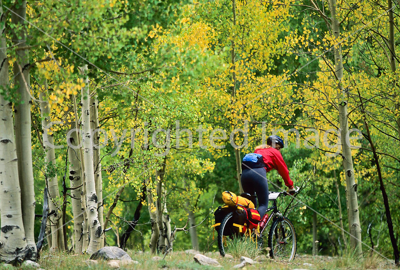 Tourer on single-track in San Juan Mts  north of Durango - 1 - 72 ppi