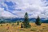 Mountain bike tourer on Colorado Trail - 16 - 72 ppi