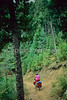 Mountain bike tourer on Colorado Trail - 17 - 72 ppi