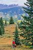 Mountain bike tourer on Colorado Trail - 19 - 72 ppi