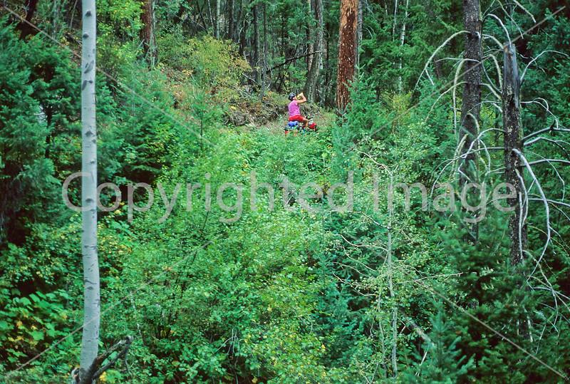 Mountain bike tourer on Colorado Trail - 20 - 72 ppi.jpeg