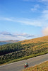 Cyclist on Trail Ridge Road in Colorado's Rocky Mountain National Park - 11 - 72 ppi
