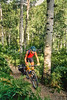 Tourer on Spring Creek Trail near Steamboat Springs, Colorado - 13 - 72 ppi