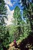 Mountain bike tourer on Colorado Trail - 14 - 72 ppi
