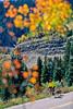 Tourer near Molas Pass between Silverton & Durango, Colorado - 8 - 72 ppi