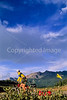 Tourer on dirt road near Lizard Head Pass & Telluride, Colorado - 10 - 72 ppi