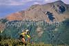 Tourer on dirt road near Lizard Head Pass & Telluride, Colorado - 8 - 72 ppi