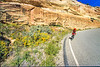 Thin-tire cyclist in Colorado Nat'l Monument, CO - 35 - 72 ppi