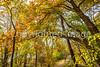 Katy Trail near Rocheport, MO - C1-0388 - 72 ppi-2