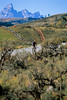 Mountain biker on Gros Ventre Road in Teton Nat'l Forest just east of Grand Teton Nat'l Park - 11 - 72 ppi