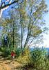 Biker on Minnesota's Gitchi-Gami State Trail on Lake Superior's western shore, near Split Rock Lighthouse - 5 - 72 ppi-2