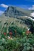 Glacier National Park, Montana - 50 - 72 dpi