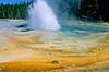 Geyer, Yellowstone - 3 - 72 dpi