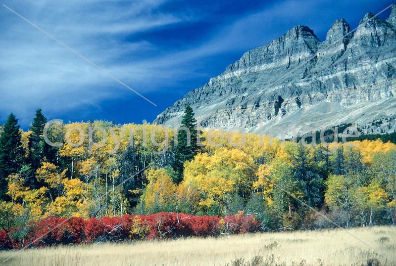 Glacier National Park, Montana - 135 - 72 dpi