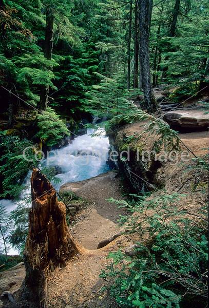 Glacier National Park, Montana - 124 - 72 dpi
