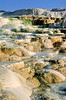 Yellowstone NP - Minerva Terrace at Mammoth Hot Springs - 3 - 72 dpi