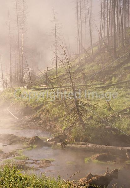 Yellowstone NP - mist & steam - 72 dpi