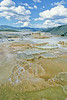 Yellowstone NP - terrace at Mammoth Hot Springs - 10 - 72 dpi