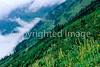Glacier National Park, Montana - 3 - 72 dpi