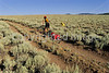 Tourer on Great Divide Trail near Atlantic City & South Pass City, Wyoming - 3 - 72 ppi