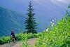 Cyclists in Glacier National Park, Montana - 72 dpi-19