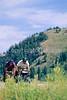ACA bike tourers in Tetons Nat'l Park, Wyoming - 10 - 72 ppi