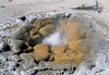Yellowstone NP - Geyser near Biscuit Basin - 72 dpi